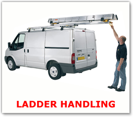 Van Ladder Handling Systems